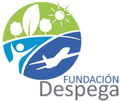 Foundation Despega