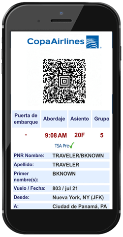 tsa-Mobile Web Check-In boarding pass