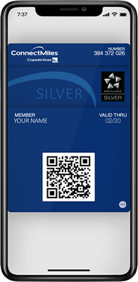 Learn how to qualify for Silver status