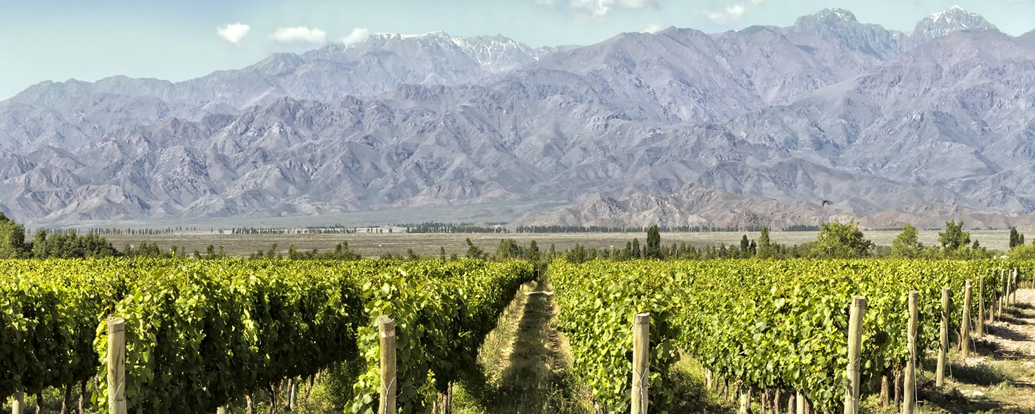 Find Copa Airlines flights from New York (JFK) to Mendoza (MDZ) from USD 949*