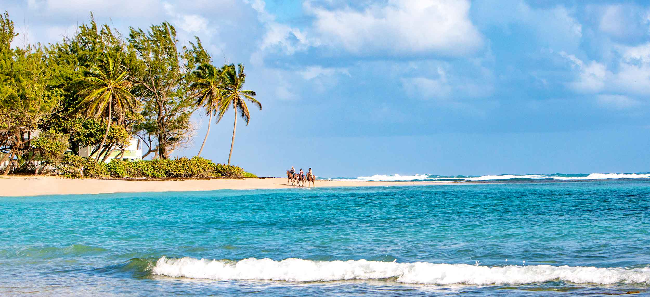 Discover Barbados with Copa Airlines
