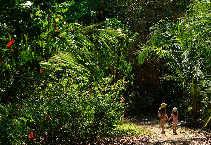 In Costa Rica, you can leave your cares behind and immerse yourself in nature's wonders.